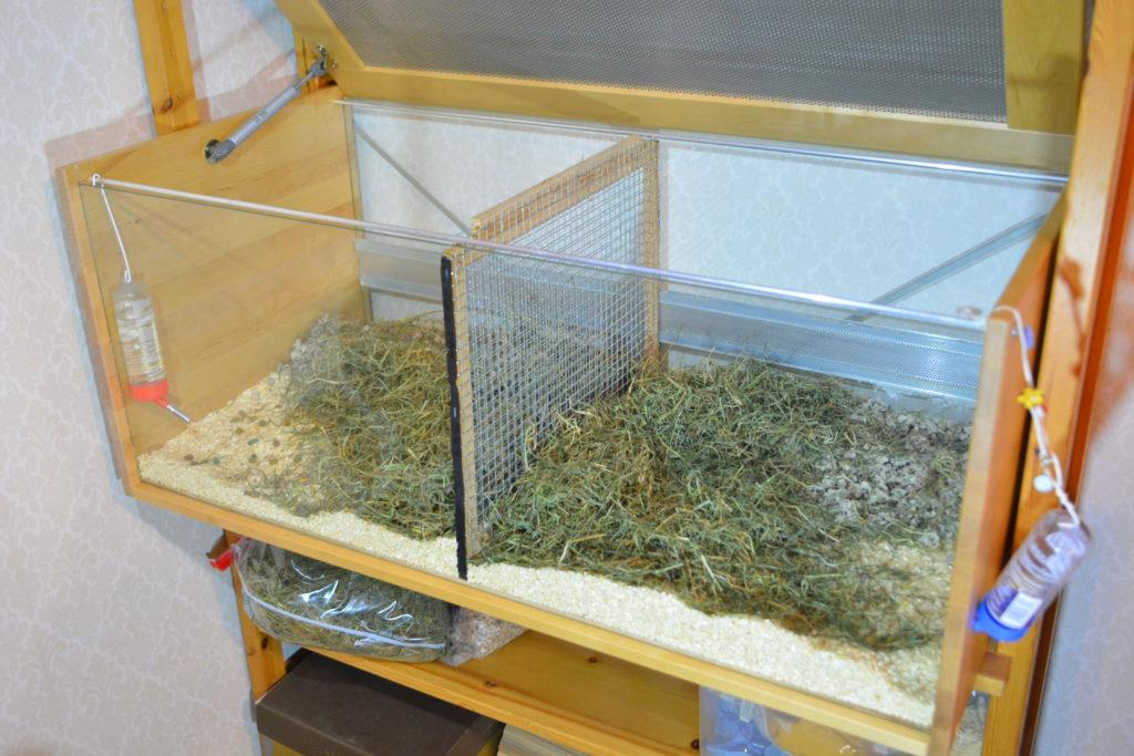 Split cage